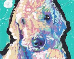 bedlington terrier stud bedlington etsy