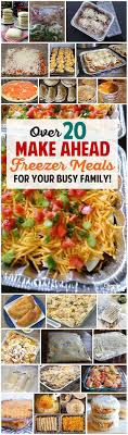 cuisine vite fait ahead freezer meals recipes for your busy family mijoteuse