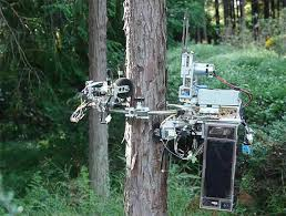 image s of the day remote controlled tree climbing chainsaw