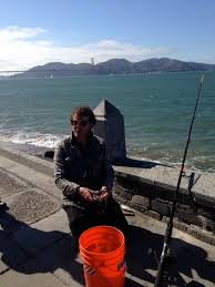 foraging for fish in our own backyard kalw