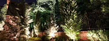 wowing your guests with unique landscape lighting features