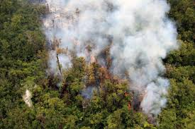 Hawaii Lava Flow Map Lava Flow Front Emerges Again From Ground Continues