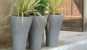 download modern outdoor plants garden design