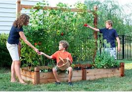 home vegetable garden ideas sensational best 25 layouts on