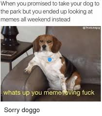 Overeating Meme - 25 best memes about you meme you memes