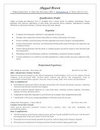 combination resume exles combination resume exles for hybrid sles sle pdf