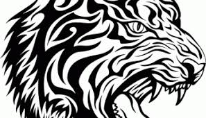 tribal angry tiger on right lower arm