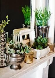 Indoor Plant Arrangements 266 Best House Plants Images On Pinterest Indoor Gardening