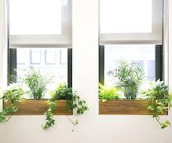 beautiful kitchen sink windows and best box window images on home