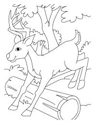 jumping deer coloring pages download free jumping deer coloring