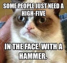 Best Grumpy Cat Memes - top 10 grumpy cat memes