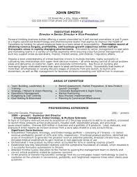 Operations Management Resume Examples Business Executive Resume Sample A Professional Resume Template
