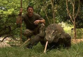 largest lizard on earth the komodo dragon deadly 60