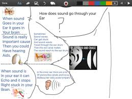 how does sound travel images How does sound get through your ear thinglink