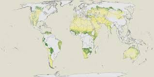 World Map Of Deserts We Discovered 1 8 Million Square Miles Of Forest In The Desert
