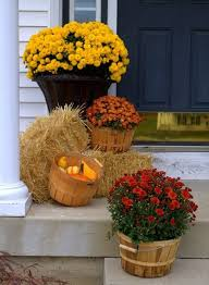 Where To Buy Fall Decorations - best 25 fall mums ideas on pinterest fall entryway decor front