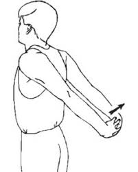 Computer And Desk Stretches Postural Exercises For Desk Workers Performance Bodywork