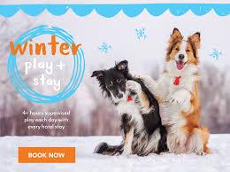 Pet Best Friends Pet Care