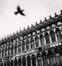black and white photography prints andy brooks fine art toronto