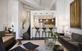 Apartment Living Room Design Ideas A Bud Elegant About