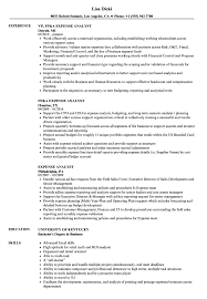 exle skills resume expense analyst resume sles velvet