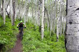 Park City Utah Trail Map by Park City Mountain Resort Pcmr Mountain Bike Trail In Park City