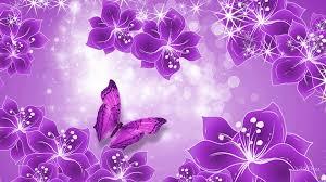 pink and purple butterfly wallpaper wallpapersafari