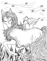 fantasy cat with horse s mac u0027s place to be