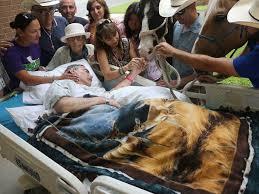 audie l murphy memorial va hospital sick veteran says farewell to his beloved horses one last
