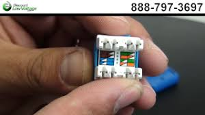 amazing cat6 wiring diagram wall plate images for gooddy org