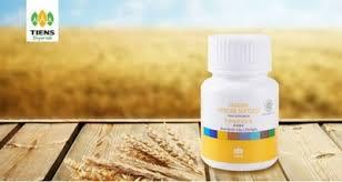 Obat Zinc review produk obat pemutih badan tiens vitaline dan zinc