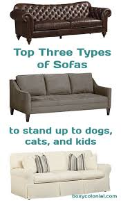 Leather Sofa And Dogs How To A Pretty Sofa While Also Dogs Cats And