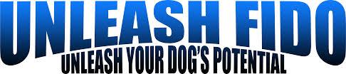 unleash fido dog u0026 puppy training dog daycare jacksonville fl