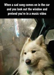 Music Video Meme - 49 super hilarious pictures funny memes memes and 50th