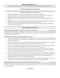 cfo resume examples free chief financial officer cfo resume