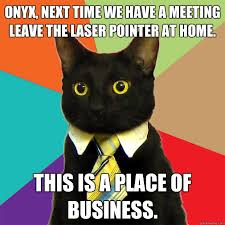 onyx next time we have a meeting cat meme cat planet cat planet