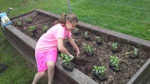 watering raised bed starting growing together beginning guide to a