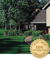 Valley Green Landscaping by Tree And Shrub Care Valley Green Companies