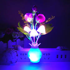 2017 light control induction night light color roses mushroom