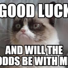 Good Luck Cat Meme - grumpy cat good luck meme mne vse pohuj