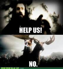 The Hobbit Meme - the hobbit the best middle earth memes smosh