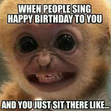 Funny Marketing Memes - 15 hilarious monkey memes to brighten your day monkey memes