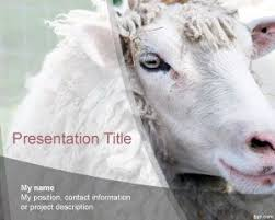 animals powerpoint templates page 5 of 11