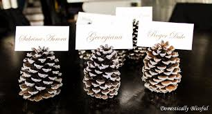 Pinecone Festive Pine Cone Crafts Perfect For The Holiday Season
