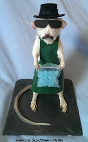 heisenberg breaking bad taxidermy rat anthropomorphic amc