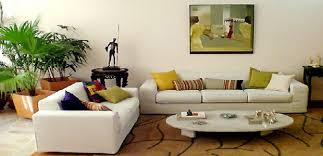 Home Decor Plants Living Room by Best Living Room Decor 2017 House Interiors