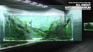 the world u0027s largest nature aquarium takashi amano youtube
