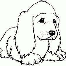 tag cute pictures puppies color cute puppies pictures
