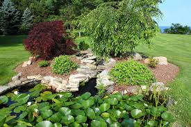 Fall Cleanup Landscaping erie pa spring and fall cleanups j c orengia landscaping