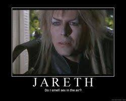 David Bowie Labyrinth Meme - flight of the conchords meme david bowie gracie stuff